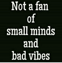 Real shit: Not a fan  small minds  and  bad vibes Real shit