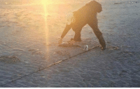 Not a gorilla walking on the beach https://t.co/CjdvE6YnuI: Not a gorilla walking on the beach https://t.co/CjdvE6YnuI