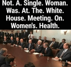 White House, House, and White: Not. A. Single. Woman.  Was. At. The. White.  House. Meeting. On.  Women's. Health. Shameful....