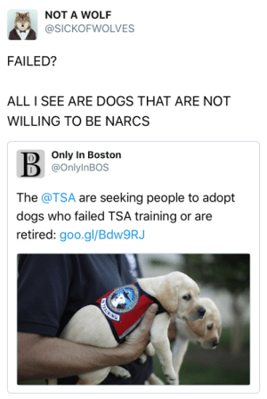Dogs, Tumblr, and Twitter: NOT A WOLF  @SICKOFWOLVES  FAILED?  ALL I SEE ARE DOGS THAT ARE NOT  WILLING TO BE NARCS   Only In Boston  @OnlylnBOS  The @TSA are seeking people to adopt  dogs who failed TSA training or are  retired: goo.gl/BdW9RJ tastefullyoffensive:  The real heros. (via sickofwolves / onlyinbos)