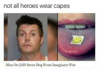 Truth: not all heroes wear capes  Man On LSD Saves Dog From Imaginary Fire Truth