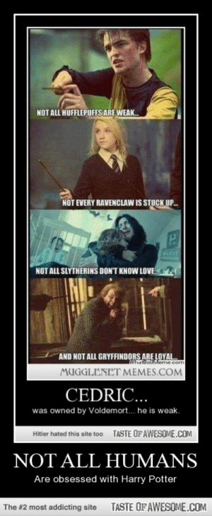 Not All Humanshttp://omg-humor.tumblr.com: NOT ALL HUFFLEPUFFS ARE WEAK.  NOT EVERY RAVENCLAW IS STUCK  UP.  KARAY  NOT ALL SLYTHERINS DON'T KNOW LOVE.  AND NOT ALL GRYFFINDORS ARE LOYAL.  WhatDoUMeme.com  MUGGLENET MEMES.COM  CEDRIC...  was owned by Voldemort... he is weak.  TASTE OF AWESOME.COM  Hitler hated this site too  NOT ALL HUMANS  Are obsessed with Harry Potter  TASTE OFAWESOME.COM  The #2 most addicting site Not All Humanshttp://omg-humor.tumblr.com
