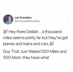 I'm gonna have to be that guy - walked*: not brendan  @crocodilethumbs  Hey there Delilah... a thousand  miles seems pretty far but they've got  planes and trains and cars  Guy That Just Waked 500 Miles and  500 More: they have what I'm gonna have to be that guy - walked*