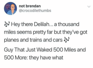 Me irl: not brendan  @crocodilethumbs  Hey there Delilah... a thousand  miles seems pretty far but they've got  planes and trains and cars J  Guy That Just Waked 500 Miles and  500 More: they have what Me irl