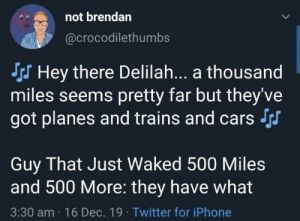 They have what now: not brendan  @crocodilethumbs  S Hey there Delilah.. a thousand  miles seems pretty far but they've  got planes and trains and cars Srs  Guy That Just Waked 500 Miles  and 500 More: they have what  3:30 am · 16 Dec. 19 · Twitter for iPhone They have what now