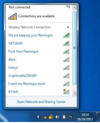 Dank, Connected, and Fuck: Not connected  Connections are available  Wireless Network Connection  We are keeping your flamingos  NETGEAR  Fuck Your Flamingos  dlink  linksys  virginmedia2261065  I want my flamingos back  BTWiFi  Open Network and Sharing Center  14:14  18/10/2012. Broadband at Swansea Uni.