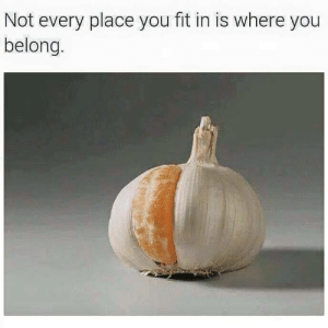 Fit, You, and  Place: Not every place you fit in is where you  belong.