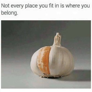 Fit, You, and Hmmm: Not every place you fit in is where you  belong. hmmm