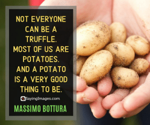 Good, Potato, and Quotes: NOT EVERYONE  CAN BE A  TRUFFLE  MOST OF US ARE  POTATOES.  AND A POTATO  IS A VERY GOOD  THING TO BE.  SayingImages.com  MASSIMO BOTTURA 20 Massimo Bottura Quotes on Living Your Passion #sayingimages #massimobotturaquotes #massimobotturaquote #massimobottura
