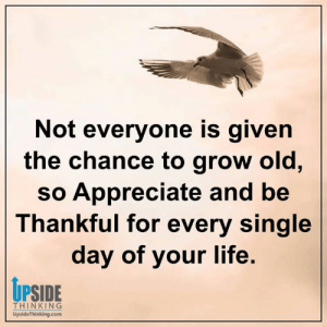 Life, Memes, and Appreciate: Not everyone is given  the chance to grow old,  so Appreciate and be  Thankful for every single  day of your life.  UPSIDE  THINKING  UpsideThinking.com Positive Happy Life with Upside Thinking ❤️
