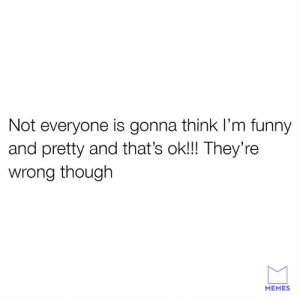 I'm hilarious.: Not everyone is gonna think I'm funny  and pretty and that's ok!!! They're  wrong though  MEMES I'm hilarious.
