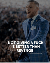 Future, Memes, and Revenge: NOT GIVING A FUCK  IS BETTER THAN  REVENGE  @The.future.entrepreneur Double tap if you agree with this..... thefutureentrepreneur