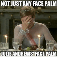 -Iceprincess: NOT JUST ANY FACE PALM  JULIEANDREWS FACEPALM -Iceprincess