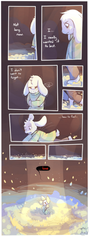 Love, Target, and Tumblr: Not  lony  now.  I reall  wanted  to last.  I dont  rge  hou to feel.  love honrupi:  asriel's lament