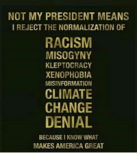 NotMyPresident ❌✊🏾✊🏽: NOT MY PRESIDENT MEANS  I REJECT THE NORMALIZATION OF  RACISM  MISOGYNY  KLEPTOCRACY  XENOPHOBIA  MISINFORMATION  CLIMATE  CHANGE  DENIAL  BECAUSE I KNOW WHAT  MAKES AMERICA GREAT NotMyPresident ❌✊🏾✊🏽