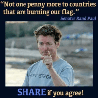 "Memes, Rand Paul, and 🤖: ""Not one penny more to countries  that are burning our flag.""  Senator Rand Paul  RMY STRO  SHARE if you agree! RE-POST IF YOU AGREE! Kevin Ace-Dog Roberts III%"
