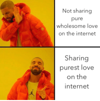 Pure Wholesome: Not sharing  pure  wholesome love  on the internet  Sharing  purest love  on the  internet