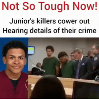 Crime, Memes, and Tough: Not So Tough Now!  Junior's killers cower out  Hearing details of their crime justiceforjunior