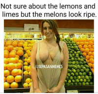 Memes, 🤖, and Looking: Not sure about the lemons and  limes but the melons look ripe.  OSEPASANMEMES 😍