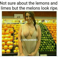 Memes, 🤖, and Look: Not sure about the lemons and  limes but the melons look ripe  OSEPASANMEMES