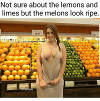 Funny, Memes, and Savage: Not sure about the lemons and  limes but the melons look ripe Follow mah teamnoharmdone member for funny and savage posts @x__antisocial_butterfly__x @x__antisocial_butterfly__x @x__antisocial_butterfly__x teamnnd nhd