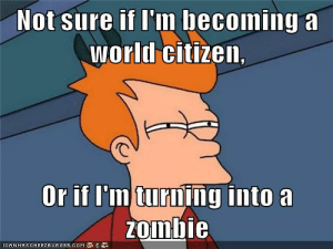 I Think, Therefore IB.: IB Memes: 1st Edition: Not sure if I'm becoming a  world citizen,  Or if I'm turning into a  zomDle  ICANHASCHEEZBURGER.COM I Think, Therefore IB.: IB Memes: 1st Edition