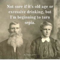 Excessive Drinking: Not sure if it's old age or  excessive drinking, but  I'm beginning to turn  sepia.  Housewife of Hell