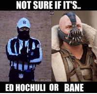 Not Sure If..: NOT SURE IF IT'S  ONFL MEMES  ED HOCHULI OR BANE Not Sure If..