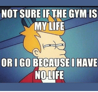 Gym, Not Sure If, and Sure: NOT SURE IF THE GYM IS  MYLIFE  rC  ORI GO BECAUSE I HAVE  NOLIFE Hmmmm
