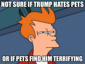 Family, White House, and Pets: NOT SURE IF TRUMP HATES PETS  OR IF PETS FIND HIM TERRIFYING  mgfip.com After reading that the Trump family is the first family in modern presidential history without a pet in the White House