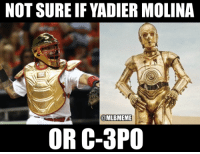 After all those Gold Gloves... #AllStarGame: NOT SURE IF YADIER MOLINA  @MLBMEME  OR C-3PO After all those Gold Gloves... #AllStarGame