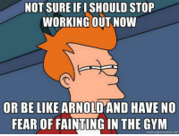 ... often left wondering  Gym Memes: NOT SURE IFISHOULD STOP  WORKING OUT NOW  OR BE LIKE ARNO  HAVE NO  FEAR OF FAINTINGIN THE GYM  meme generator net ... often left wondering  Gym Memes