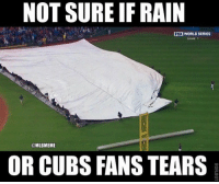 Mlb, Cubs, and World: NOT SURE IFRAIN  FOX WORLD SERIES  @MLBMEME  OR CUBS FANS TEARS The Cubs were so close! WorldSeries