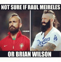 Lookalike!: NOT SURE IFRAULMEIRELES  @MLBMEME  OR BRIAN WILSON Lookalike!