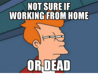 working from home: NOT SUREIF  WORKING FROM HOME  OR DEAD