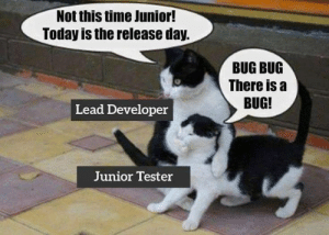 You're really an exceptional programmer…Now shut up..: Not this time Junior!  Today is the release day.  BUG BUG  There is a  BUG!  Lead Developer  Junior Tester You're really an exceptional programmer…Now shut up..