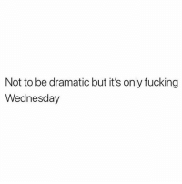 Fucking, Wednesday, and Girl Memes: Not to be dramatic but it's only fucking  Wednesday For you it's Valentine's Day but for me it's just another lonely Wednesday and I've been thinking about my bed ever since I got out of it. 💖