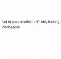 Fucking, Memes, and Shit: Not to be dramatic but it's only fucking  Wednesday *Loses shit*