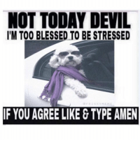 Blessed af: NOT TODAY DEVIL  I'M TOO BLESSED TO BE STRESSED  MEME  IF YOU AGREE LIKE TYPE AMEN Blessed af