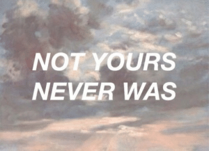 Never Was: NOT YOURS  NEVER WAS