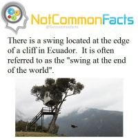 """👌🏽 Comment """"AWESOME """" letter by letter without getting interrupted. I bet you can't!: NotCommonFacts  @Notcommon facts  There is a swing located at the edge  of a cliff in Ecuador. It is often  referred to as the """"swing at the end  of the world"""". 👌🏽 Comment """"AWESOME """" letter by letter without getting interrupted. I bet you can't!"""