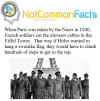 "👌🏽 Comment ""PARIS "" letter by letter without getting interrupted. I bet you can't!: NotCommonFacts  @Notcommon facts  When Paris was taken by the Nazis in 1940,  French soldiers cut the elevator cables in the  Eiffel Tower. That way if Hitler wanted to  hang a swastika flag, they would have to climb  hundreds of steps to get to the top 👌🏽 Comment ""PARIS "" letter by letter without getting interrupted. I bet you can't!"