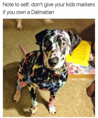 Lisa Frank is crazy for this one: Note to self: don't give your kids markers  if you own a Dalmatian Lisa Frank is crazy for this one