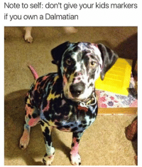 I guess it could have been worse.. | @cuteandfuzzybunch 🐶: Note to self: don't give your kids markers  if you own a Dalmatian I guess it could have been worse.. | @cuteandfuzzybunch 🐶