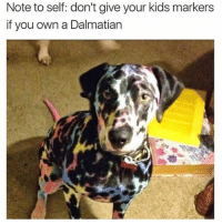 The Amazing Technicolor Fur Coat @pettylivesmatter 🐶🏳️🌈: Note to self: don't give your kids markers  if you own a Dalmatian The Amazing Technicolor Fur Coat @pettylivesmatter 🐶🏳️🌈