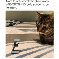 Memes, 🤖, and Amazons: Note to selt...Check the dimenslOns  of EVERYTHING before ordering on  Amazon i just finished watching this is us and i really like it tbh :~)) @nuggeret