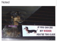 Funny, Too Close, and Wieners: Noted  IF YOU CAN SEE  My WIENER  YOU'RE TOO CLOSE Lmaoooo
