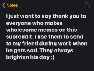 I really appreciate when everyone does.: (Notes  I just want to say thank you to  everyone who makes  wholesome memes on this  subreddit. I use them to send  to my friend during work when  he gets sad. They always  brighten his day :) I really appreciate when everyone does.