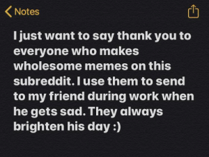 I really appreciate when everyone does.: (Notes  I just want to say thank you to  everyone who makes  wholesome memes on this  subreddit. Iuse them to send  to my friend during work when  he gets sad. They always  brighten his day :) I really appreciate when everyone does.