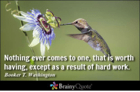 Memes, Work, and Http: Nothing ever comes to one, that is worth  having, except as a result of hard work.  Booker T. Washington  Brainy  Quote Nothing ever comes to one, that is worth having, except as a result of hard work. - Booker T. Washington http://www.brainyquote.com/quotes/authors/b/booker_t_washington.html #motivationalmonday #success #QOTD